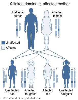 X-linked hypophosphatemia dominant_mother