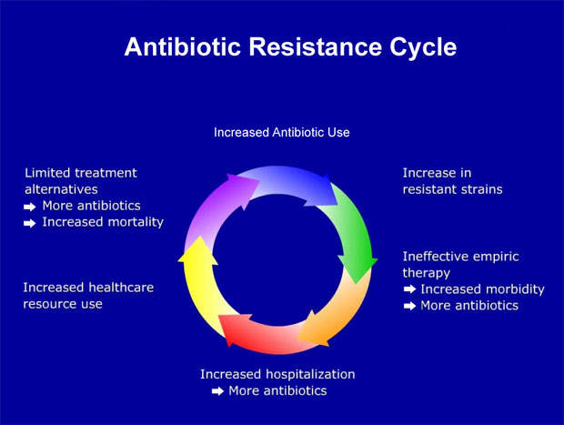 Bacterial resistance to antibiotics can have serious consequences.