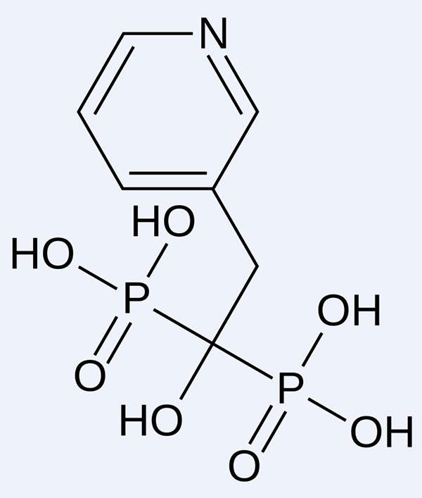 The active ingredient in actonel is risedronate sodium, a potent antiresorptive agent.
