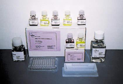 Xenometrix cytotoxicity screening kits