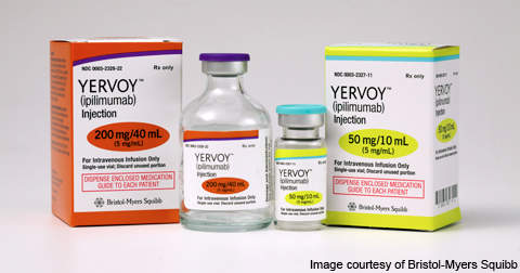 Yervoy is the first drug approved for treating metastatic melanoma.