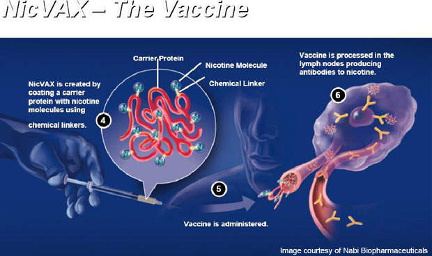 NicVAX is intended to reduce or eliminate physical nicotine addiction.