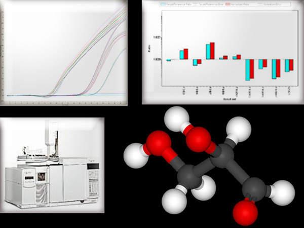 Pharmaceutical bioactivity testing