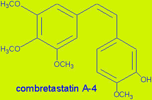 Molecular structure of combretastatin, an anti-cancer medicine that can now be synthesised.