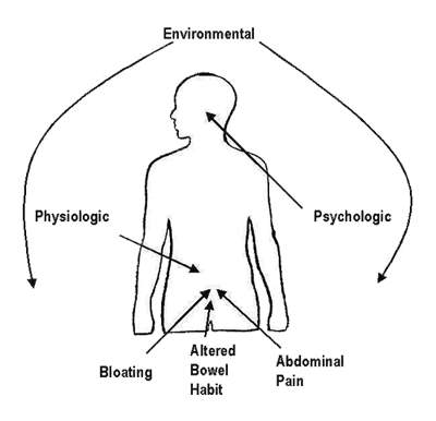 Relationship between environmental, physiological and psychological factors in the development of IBS.
