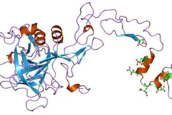The drug contains a recombinant factor IX (rFIX) protein. Image courtesy of Baxter.