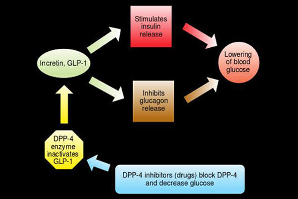 The drug contains GLP-1 receptor agonist. Image: courtesy of Ilmari Karonen.