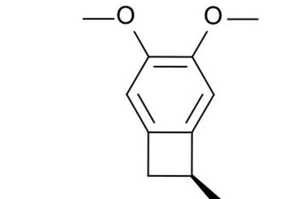 Corlanor contains an active ingredient called ivabradine. Image is in the public domain.