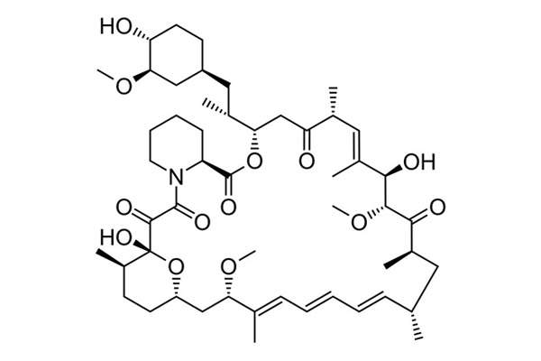 Sirolimus, the active ingredient in Rapamune, is a potent immunosuppressive. Image: public domain.
