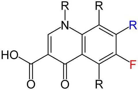 The basic structure of all quinolone antibiotics.
