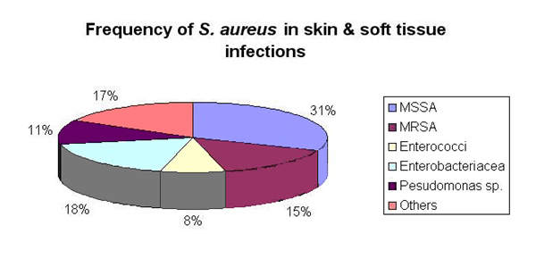 <i>S aureus</i> is a major cause of skin and soft tissue infections, with infections due to MRSA particularly difficult to treat.