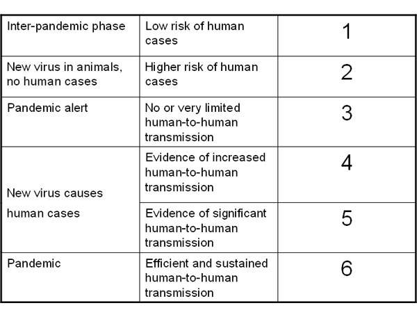 Six phases have been indicated in the World Health Organisation's pandemic alert system for informing the world of the threat from a flu pandemic and when progressively more advanced activities to contain the threat are needed. Changes from one phase to another are governed by factors, such as the epidemiological behaviour of the disease and characteristics of the virus in circulation.