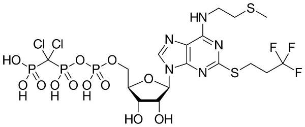 Kengreal contains an active ingredient called cangrelor, a platelet receptor antagonist. Image: public domain.