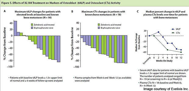 Image showing the effects of cabozantinib treatment on markers of osteoblast (tALP) and osteoclast (CTx) activity.