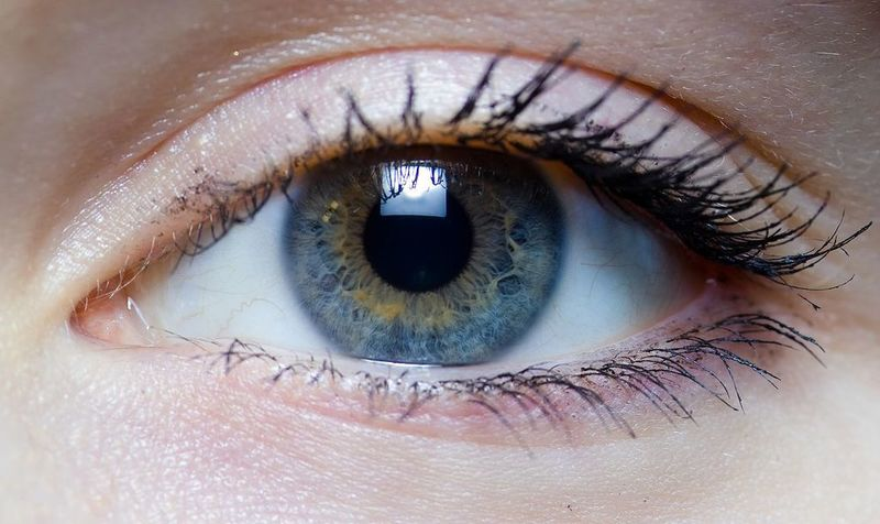 ReGenTree begins ARISE-3 trial of RGN-259 for dry eye