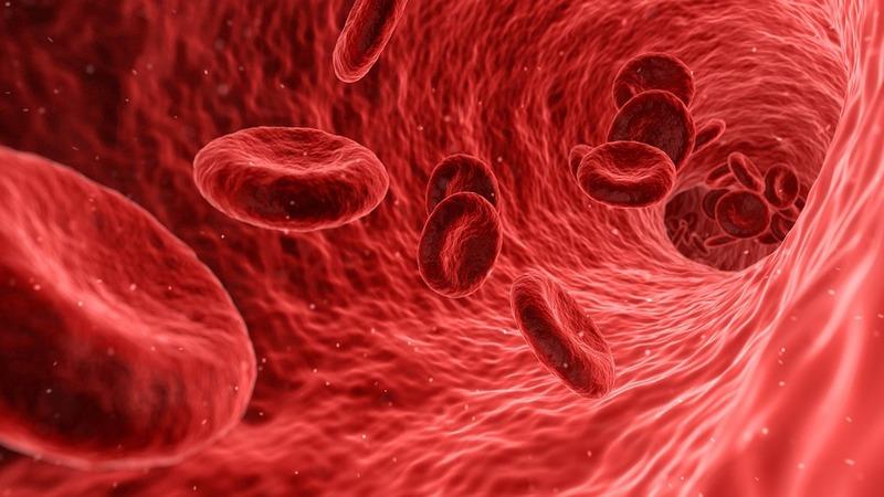 BioMarin haemophilia A gene therapy