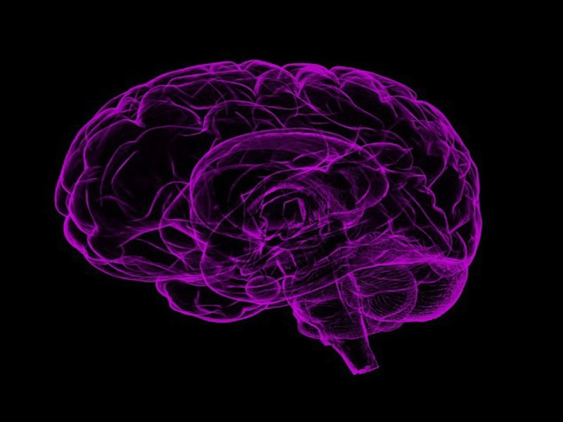 Actinogen's Xanamem fails to improve cognition in Phase II study