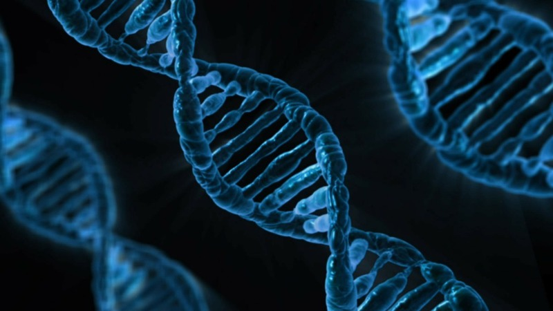Homology Medicines begins Phase I/II study of PKU gene therapy