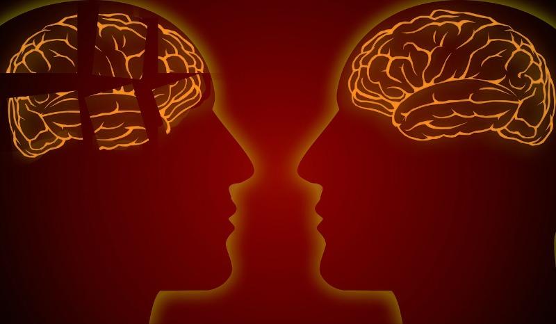 Amgen and Novartis suspend two Alzheimer's prevention trials